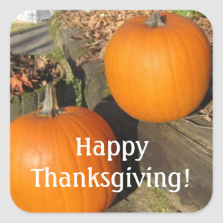 Thanksgiving Country Pumpkins Square Sticker