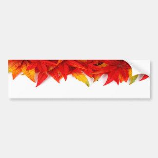 Thanksgiving Day Bumper Sticker