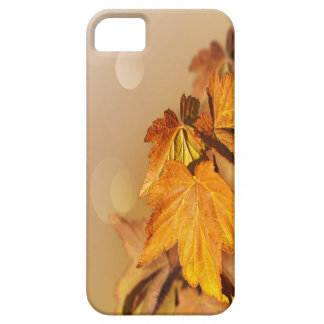 Thanksgiving Day iPhone 5 Case