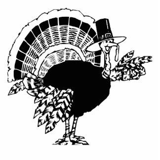Thanksgiving Day Turkey Photo Cutouts