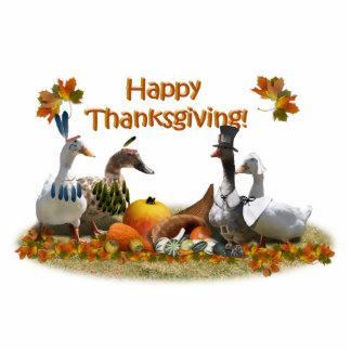 Thanksgiving Ducks - Pilgrims & Indians Photo Cutouts