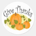 Thanksgiving Harvest Pumpkins Round Stickers