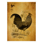 Thanksgiving Rooster Posters