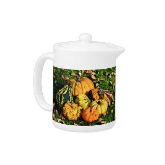 Thanksgiving Scene with Pumpkins-Corn-Gourds