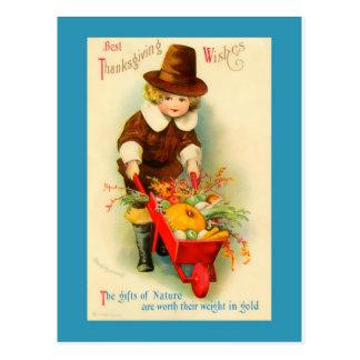 Thanksgiving Vintage Pilgrim Boy & Wheelbarrow Postcard