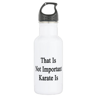 That Is Not Important Karate Is 532 Ml Water Bottle