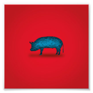 That'll do Pig... Photographic Print