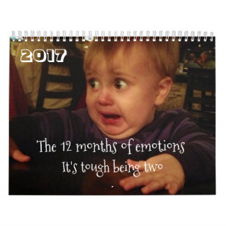 The 12 months of emotions-toddler problems. FUNNY Calendars