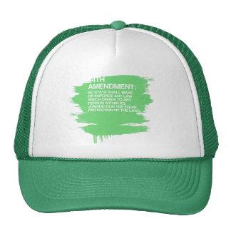 THE 14TH AMENDMENT CAP