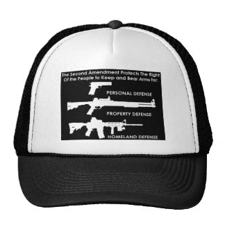 The 2nd Amendment Protects Hats