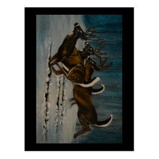 The 3 Deers Postcard