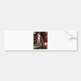 The Accolade - add your image Bumper Sticker