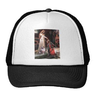 The Accolate - Aussie Shep 1 Hat