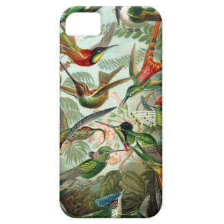 The Amazing hummingbirds Image by Ernst Haeckel Barely There iPhone 5 Case