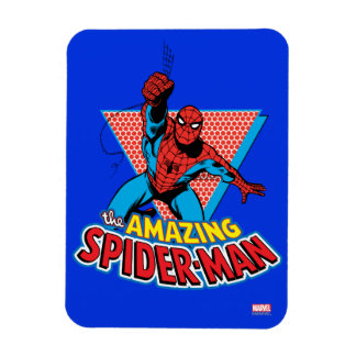 The Amazing Spider-Man Graphic Magnet