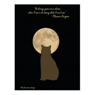 The amazing world of cats: cat looking at the moon postcard