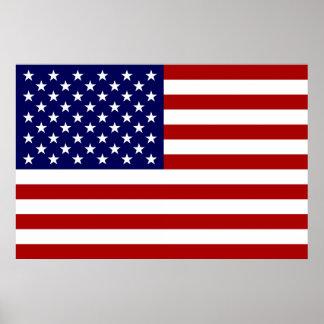 The American Flag Print