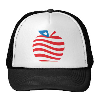 The American Teach Big Apple Collection Cap
