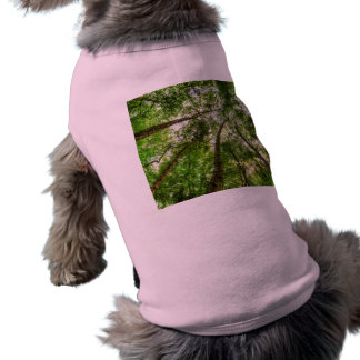 The Ancient Tree Canopy Shirt