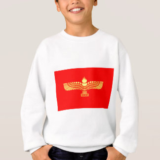 the-aramaic-flag- sweatshirt