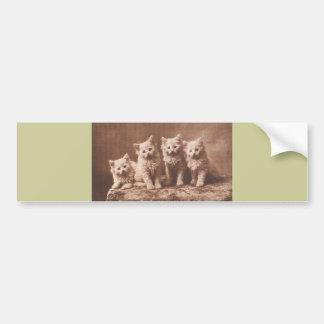 *The Aristocrats* Vintage Kitten Portrait Bumper Sticker