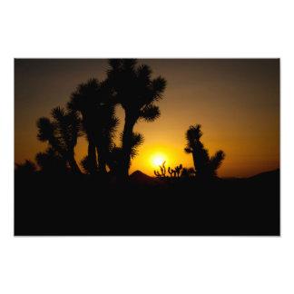 """The Arizona Desert"" sunset landscape photography Photo Art"