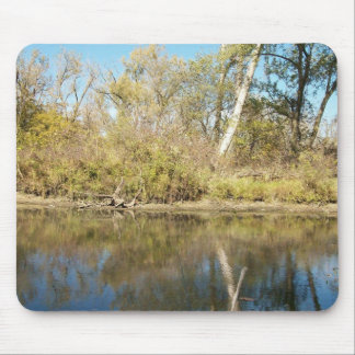 The Ash Tree Mouse Pad