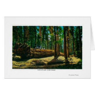 The Auto Log in Giant Forest, Redwoods Card