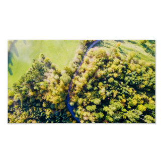 The autumn forest | poster print aerial photograph