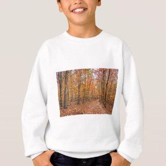 The Autumn Trail Sweatshirt