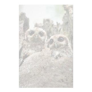 The Bare-legged Owl Or Cuban Screech Owl Custom Stationery