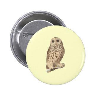 The Barred Owl(Ulula nebulosa) Pin