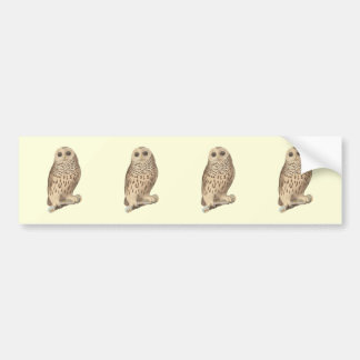The Barred Owl(Ulula nebulosa) Car Bumper Sticker