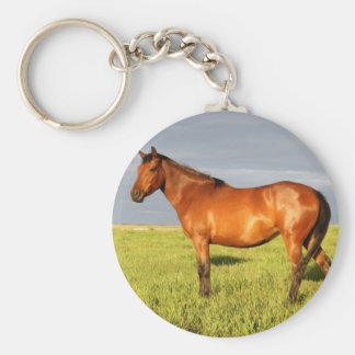 The Bay Mare Key Ring