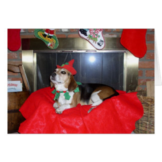 The Beagle Christmas Elf Greeting Card