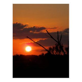 The Beautiful Sunset Postcard