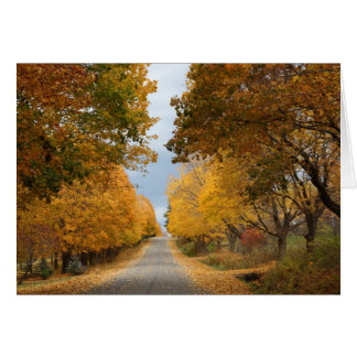 """The Beauty of Autumn"" Card"