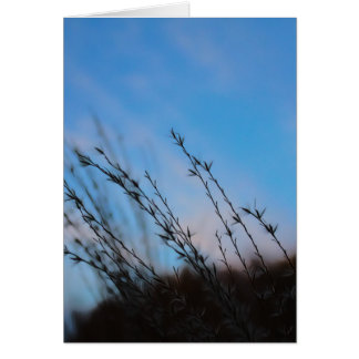 The Beauty of Simplicity Note Cards