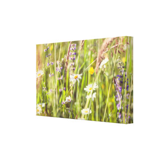 The beauty of the countryside wild flowers canvas print
