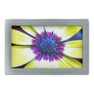 The Beauty of Yellow and Purple Belt Buckles