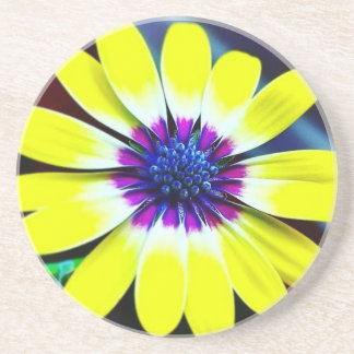 The Beauty of Yellow and Purple Coaster