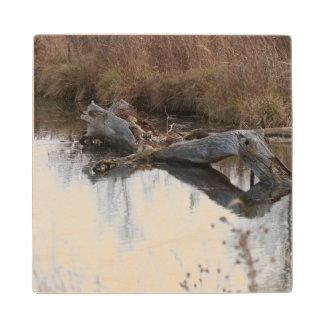 The Beavers Lair Wood Coaster