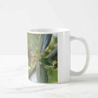 the bee coffee mug