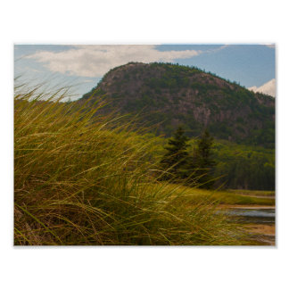The Beehive, Acadia National Park, Maine Poster