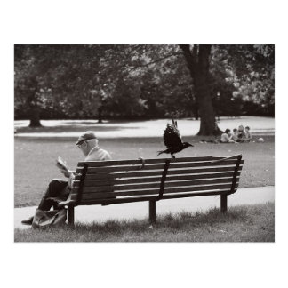 The bench postcard