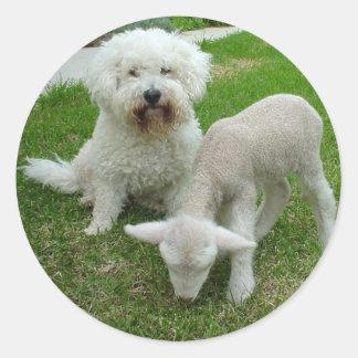 The Bichon Lamb-Minder Gift Range Round Sticker