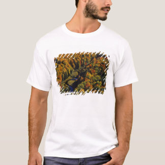 The Big Carp River in autumn at Porcupine T-Shirt
