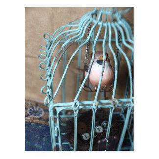 The Bird Holds the Key Postcard