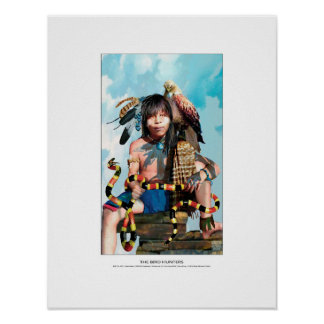 The Bird Hunters, chaco canyon youth, hawk & snake Poster