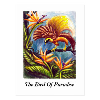 The Bird of Paradise Postcard